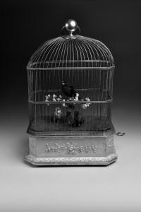 Cage à oiseaux chanteurs au musée CIMA, Sainte-Croix (VD). Crédit photo: Christophe Carisey.